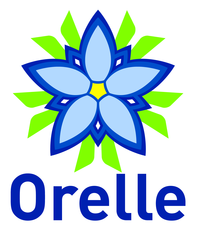 DSP ou gestion (marché public de service) - COMMUNE D'ORELLE
