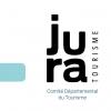 Prestations de services informatiques, internet - COMITE DEPARTEMENTAL DU TOURISME DU JURA